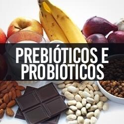 Prebióticos e Probióticos
